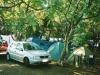 08-camp-bilus-split