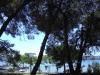 02 Apartmani Park - Sv. Filip i Jakov