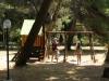 13 Apartmani Park - Sv. Filip i Jakov