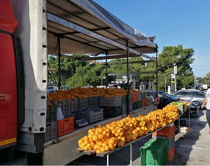 Mandarine iz Opuzena